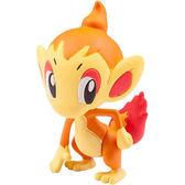 神奇寶貝 小火焰猴Chimchar PCC_35 (精靈寶可夢 Pokemon GO) 97583