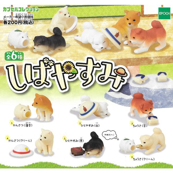 全套6款【日本正版】休息一下柴犬 扭蛋 轉蛋 柴犬 擺飾 休憩的柴犬 EPOCH - 616340