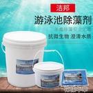 潔邦游泳池滅藻劑除藻劑藍礬硫酸銅青苔除綠藻消毒片藥劑特惠免郵 快速出貨