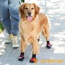 大狗鞋子中型犬大型犬透氣襪子不掉寵物腳套【小獅子】