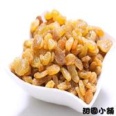 白葡萄乾 大包裝 天然零食 葡萄果乾 果乾 白葡萄【甜園小舖】