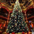 食尚玩家   豪華大型聖誕樹聖誕樹禮品商...