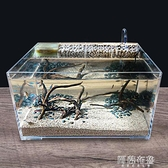 魚缸 桌面生態魚缸亞克力烏龜缸小型水龜缸客廳水陸造景缸帶過濾免換水 MKS阿薩布魯