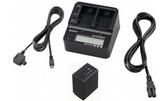 【聖影數位】SONY ACC-V1BPA 雙槽急速充器組 (含NP-FV100A電池)