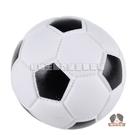 【寵物王國】H80-11小足球玩具