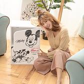 迪士尼-二門櫃/雙層櫃/木櫃/收納櫃/書櫃 (台灣製造) 米奇米妮【網狐家居】