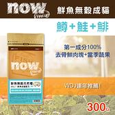 【毛麻吉寵物舖】Now! 鮮魚無穀天然糧 成貓配方-300克-WDJ推薦 貓糧/貓飼料