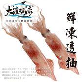 極鮮海釣 透抽 / 中卷  ( 小尾 200g-300g±10% _ 尾 ) 【大溪現流】