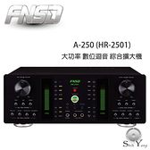 FNSD 華成 A-250 大功率 數位迴音 綜合擴大機【免運+公司貨】A6V替代機種