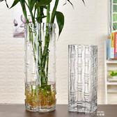 現代簡約富貴竹花瓶擺件轉運客廳玻璃插花透明特大號水培家用落地 道禾生活館
