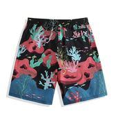 雙十一狂歡節 速浪速干沙灘褲男寬鬆泰國海邊度假運動短褲平角溫泉卡通成人泳褲 小巨蛋之家