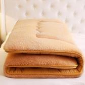 保暖床墊墊被單雙人墊背床褥軟褥子加厚冬天【聚可愛】