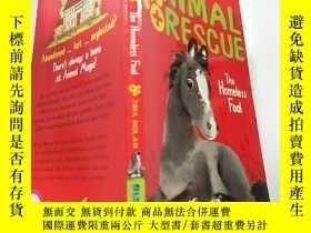 二手書博民逛書店Animal罕見Rescue 動物救護Y200392