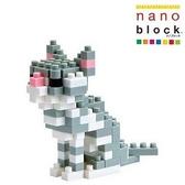 【日本KAWADA河田】Nanoblock迷你積木-美國短毛貓 NBC-032