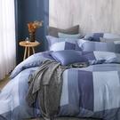 鴻宇 雙人特大床包薄被套組 天絲300織 洛普 台灣製 T20112