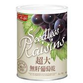 紅布朗-超大無子葡萄乾420g