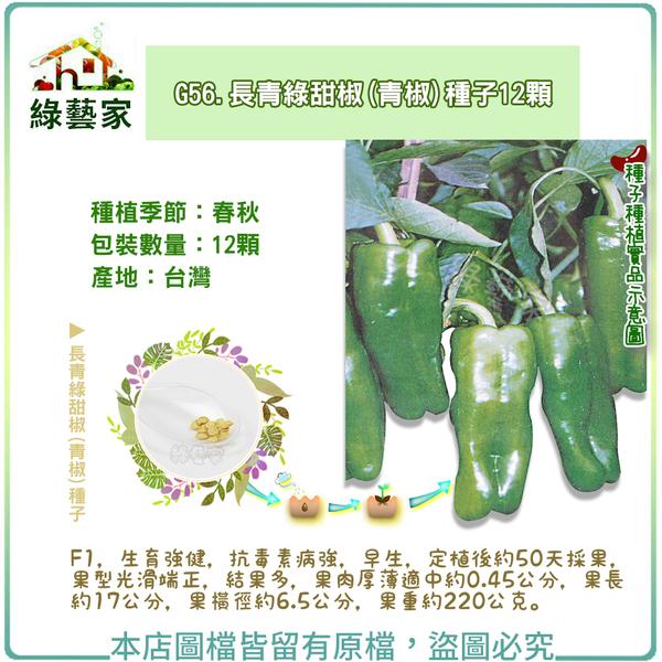 【綠藝家】G56.長青綠甜椒(青椒)種子12顆
