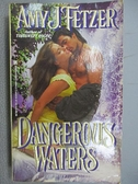 【書寶二手書T2/原文小說_C4Z】Dangerous Waters_Amy J. Fetzer