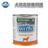 ◆MIX米克斯◆法米納-犬用高營養照護處方主食罐300g(FD-9013)