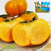 鮮採家 特級摩天嶺高山甜柿14顆禮盒(9A,單顆8-9兩)