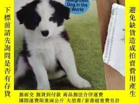 二手書博民逛書店DEVON罕見The Naughtiest Dog in the WorldY15335