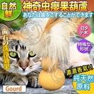 【培菓平價寵物網】自然鮮系列》神奇虫嬰果葫蘆貓玩具NF-026