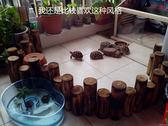 爬蟲散養圍欄蘇卡達豹龜輻射陸龜散養曬太陽實木碳化圍欄防水防腐 igo卡洛琳