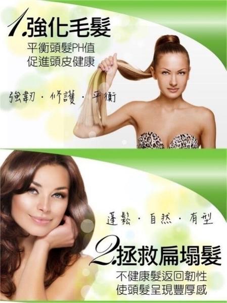 (現貨特價)1000ml 紅不讓葉綠素草本精油 按摩頭皮護髮素 護髮霜*HAIR魔髮師*