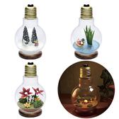 嚕嚕米 情境小夜燈 燈泡造型 療育 Moomin 日本正版 該該貝比日本精品 ☆