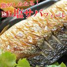 F2【魚大俠】FH109薄鹽挪威鯖魚片N...