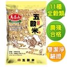 【馬玉山】五穀米3kg~免到COSTCO...