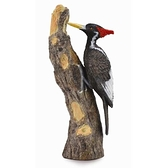 【永曄】collectA 柯雷塔A-英國高擬真動物模型-飛禽動物系列-象牙喙啄木鳥 888026