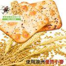 (特價) 自然主意 生機蘇打餅180g/袋 (全素) 藍藻/亞麻仁籽/香草