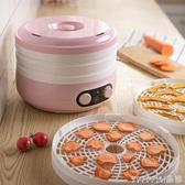 新品乾果機小熊家用幹果機小型烘幹機蔬菜寵物肉類食物脫水風幹機5L大容量LX
