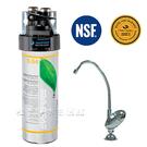 《愛惠浦》 除鉛經濟型生飲設備 S54【濱特爾公司貨】含專業安裝