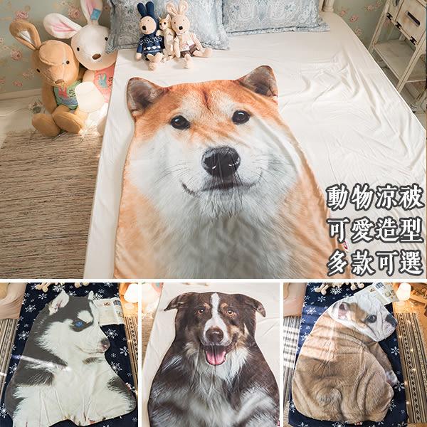 動物涼被 約80cm X 115cm 每隻造型不同,大小略有差異 柴犬/鬥牛犬/黃金獵犬