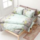 床包 / 雙人加大【香草綠】含兩件枕套 100%純棉 戀家小舖台灣製AAC301