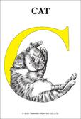【拼圖總動員 PUZZLE STORY】C 貓  台旺/動物/126P