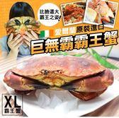 【大口市集】愛爾蘭熟凍霸王蟹2隻(800-900g/隻)+贈扇貝10顆
