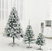 T-聖誕節 ins蘭系 植絨雪松 聖誕樹套餐 1.2米植絨雪松蘭系套餐