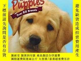 二手書博民逛書店Love罕見Dogs and Puppies: Over 50 Breeds-愛犬和小狗:超過50個品種Y34