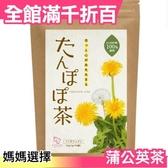 【蒲公英茶 2g×30包入】空運 日本製 綠茶 煎茶 抹茶 茶包 飲品 下午茶 開會 茶飲【小福部屋】