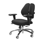 GXG 人體工學 雙背椅 (鋁腳/4D升降扶手)TW-2991 LU3#訂購備註顏色