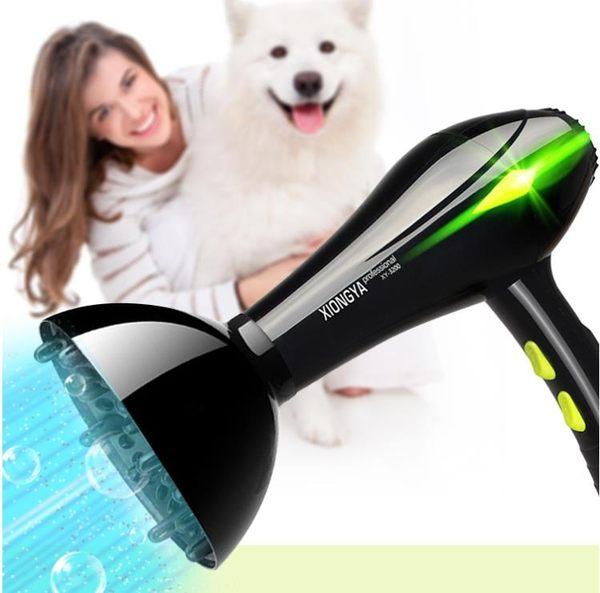 寵物吹水機 寵物吹風機大功率狗狗專用吹毛神器金毛泰迪貓咪小型大型犬吹水機 第六空間 igo