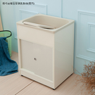 【JL精品工坊】精巧櫥櫃型塑鋼洗衣槽(雙門)限時$3990/流理台/洗衣槽/洗手台/水槽/洗碗槽/洗衣板