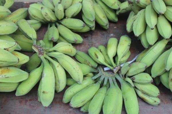 【果之蔬-全省宅配免運】旦蕉(一口蕉)(皇帝蕉)(5斤)禮盒