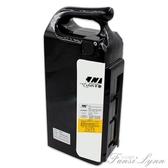 48V台鈴愉途台嘉鬆吉愛瑪菲爾電動鋰車鋰電池10AH12A15AH通用電瓶 HM 范思蓮恩