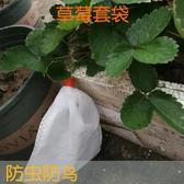 防鳥網番石榴桃子水果草莓無花果套袋防鳥防蟲芭樂楊桃專用袋  【快速出貨】