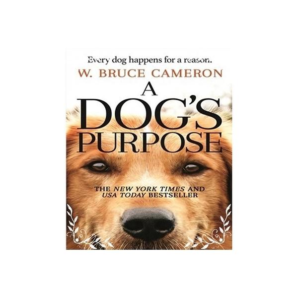 A Dog s Purpose(為了與你相遇)(電影封面)