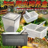 爬蟲爬寵蜘蛛守宮蜥蜴蝎子蜈蚣角蛙龜蝸牛飼養盒寵物蛇飼養箱igo【蘇迪蔓】